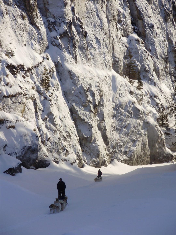 Dog Mush trip adventure wilderness Alaska, Yukon