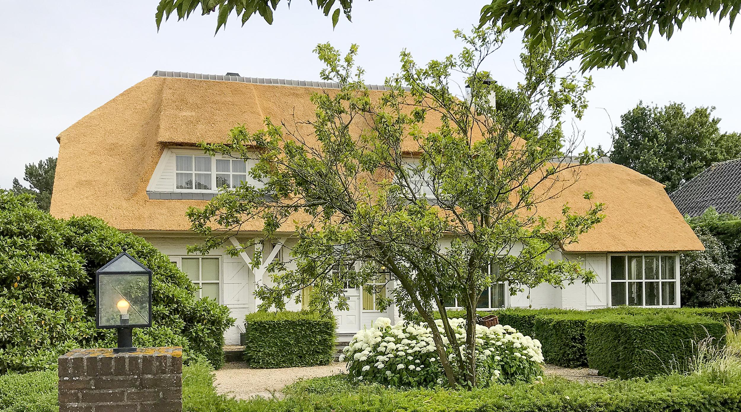Rietdekkers-VOOGT-Delft-rietendak-Sassenheim-2500-02.jpg