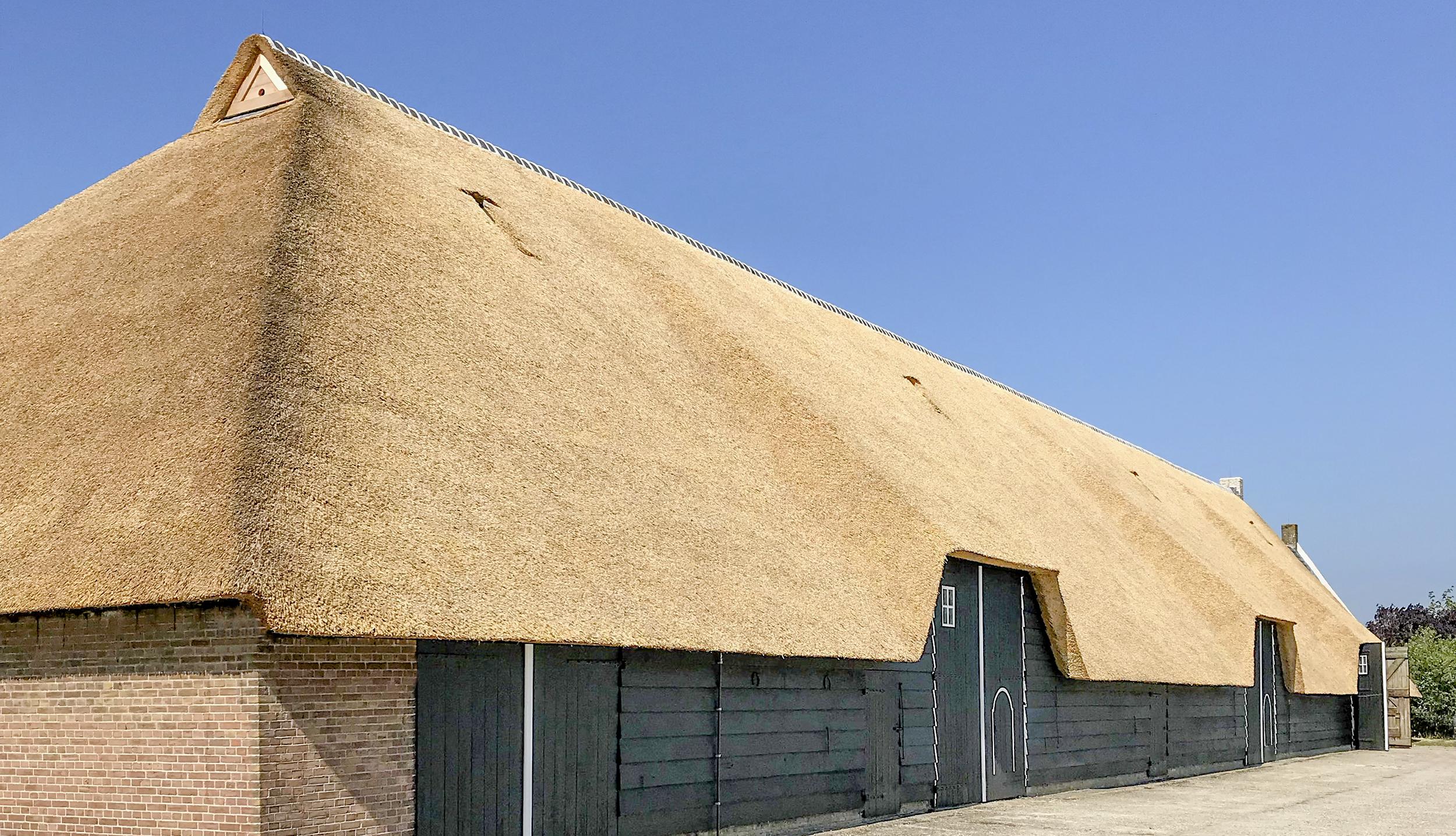 Rietdekkers-VOOGT-Delft-rietendak-Wolphaartsdijk-2500-01.jpg