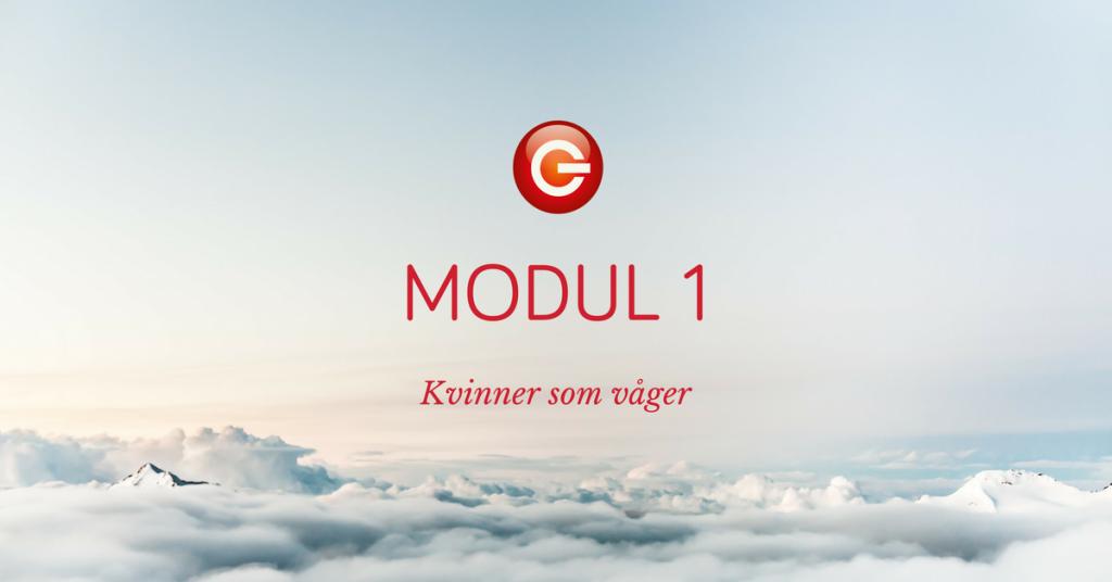 KSV-modul-1-1024x536.png