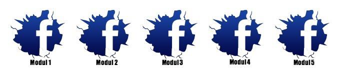 Facebook kurs trine grung 2013