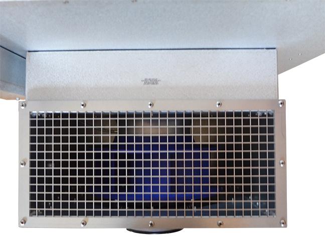 Fan-4.jpg