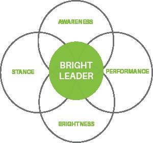 Bright Leader Model plain (1).png