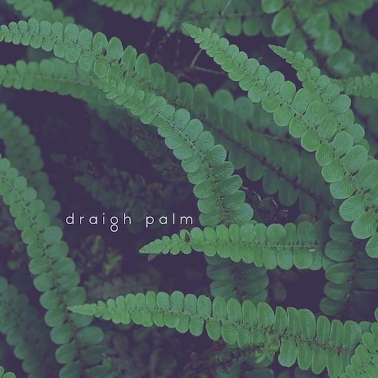 draigh_palm.jpg