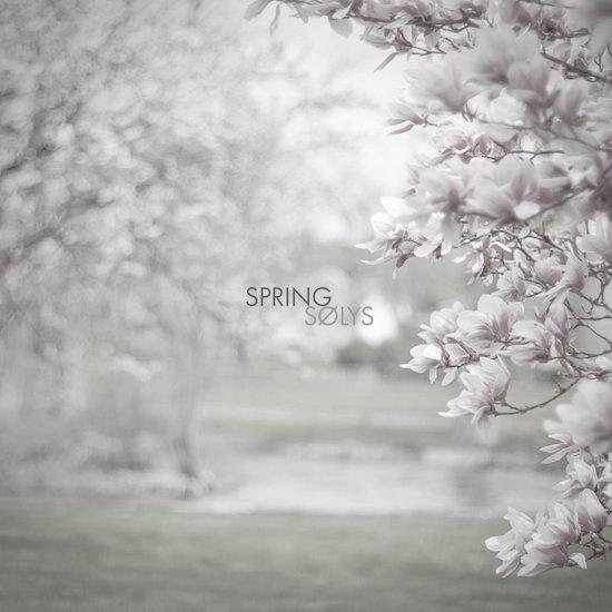solys_spring.jpg