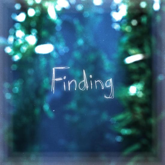 RHYNE_Finding.jpeg
