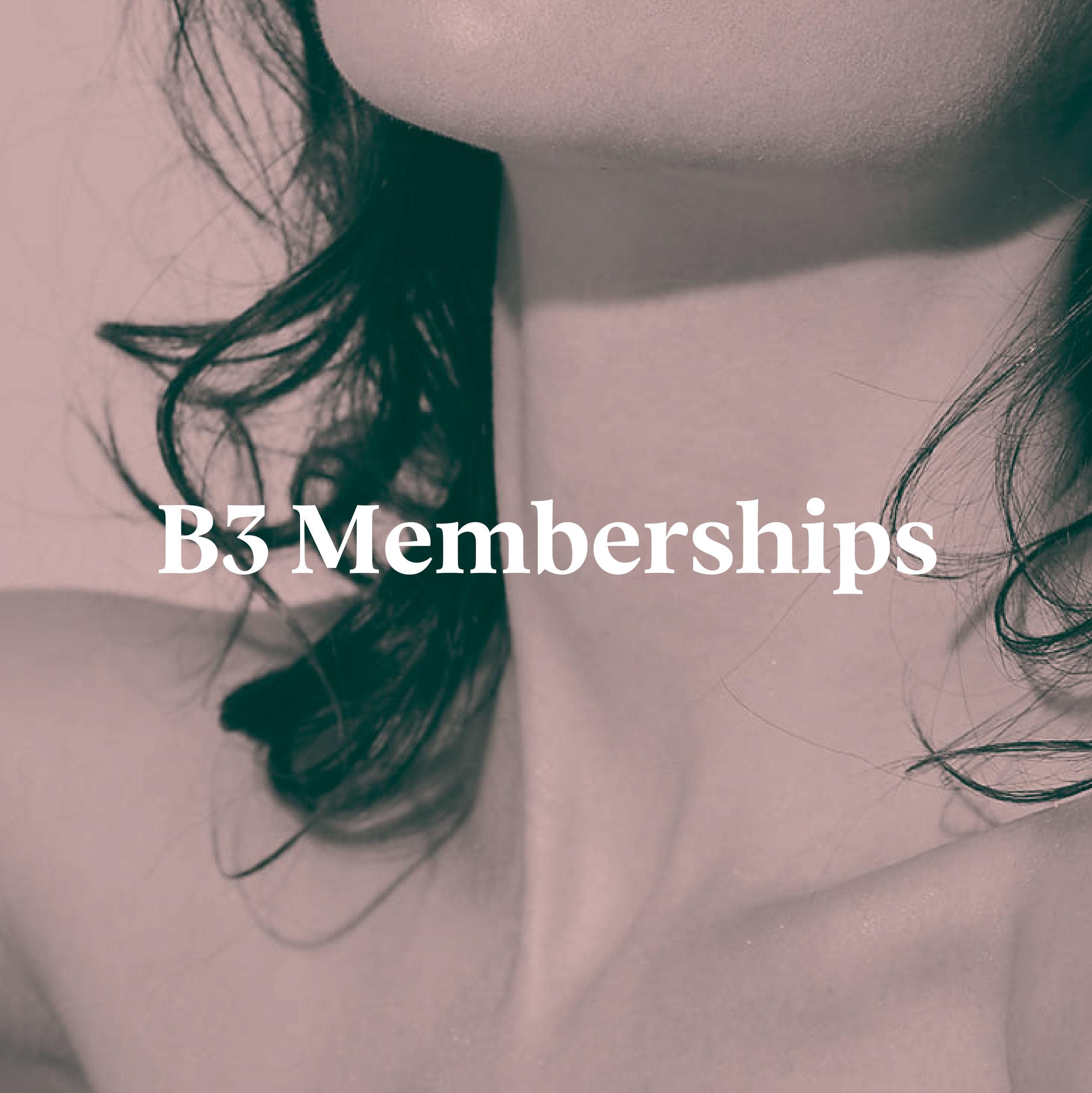 b3_services images-memberships-09.jpg