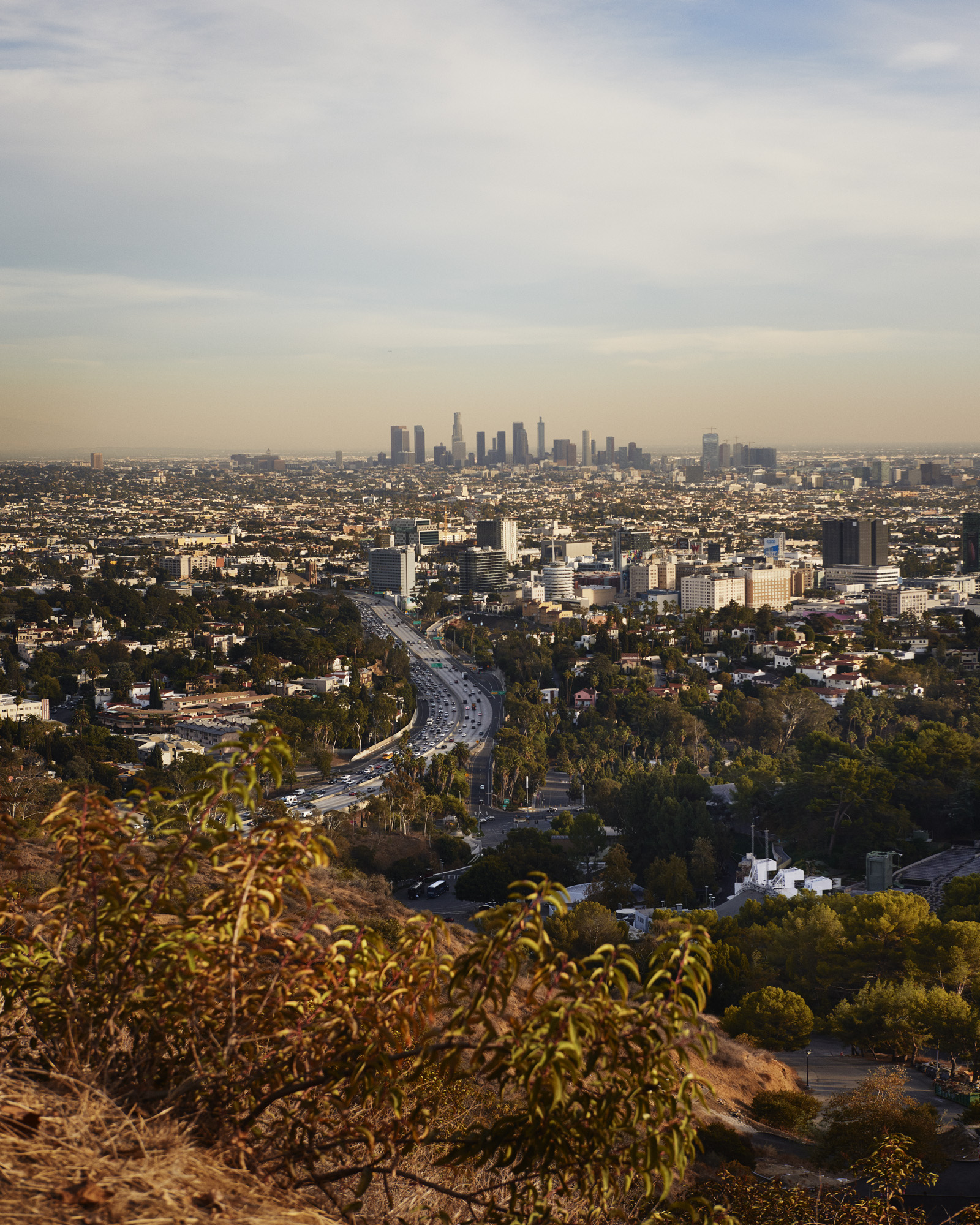 Our daily hike in North Hollywood took us to this view.