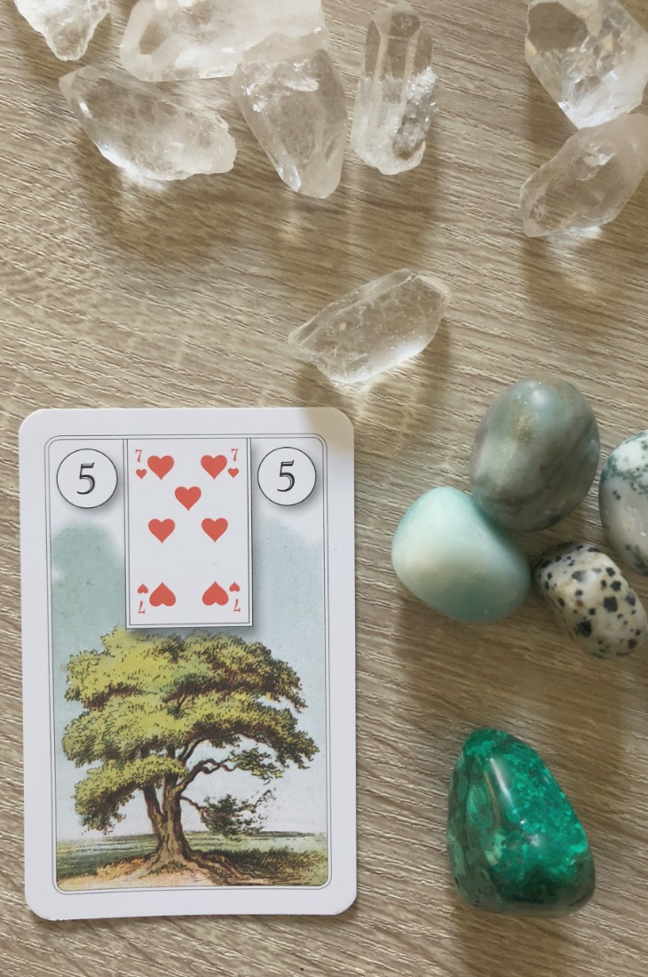 Lenormand Tree card meanings and interpretations. Learn how to read the Lenormand Tree card for general, love, business, money, health and other types of readings. In Lenormand decks, Tree is a card which represents family relationships and health.