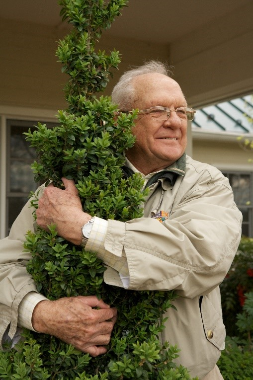 Paul with one of his favorite boxwood cultivars.