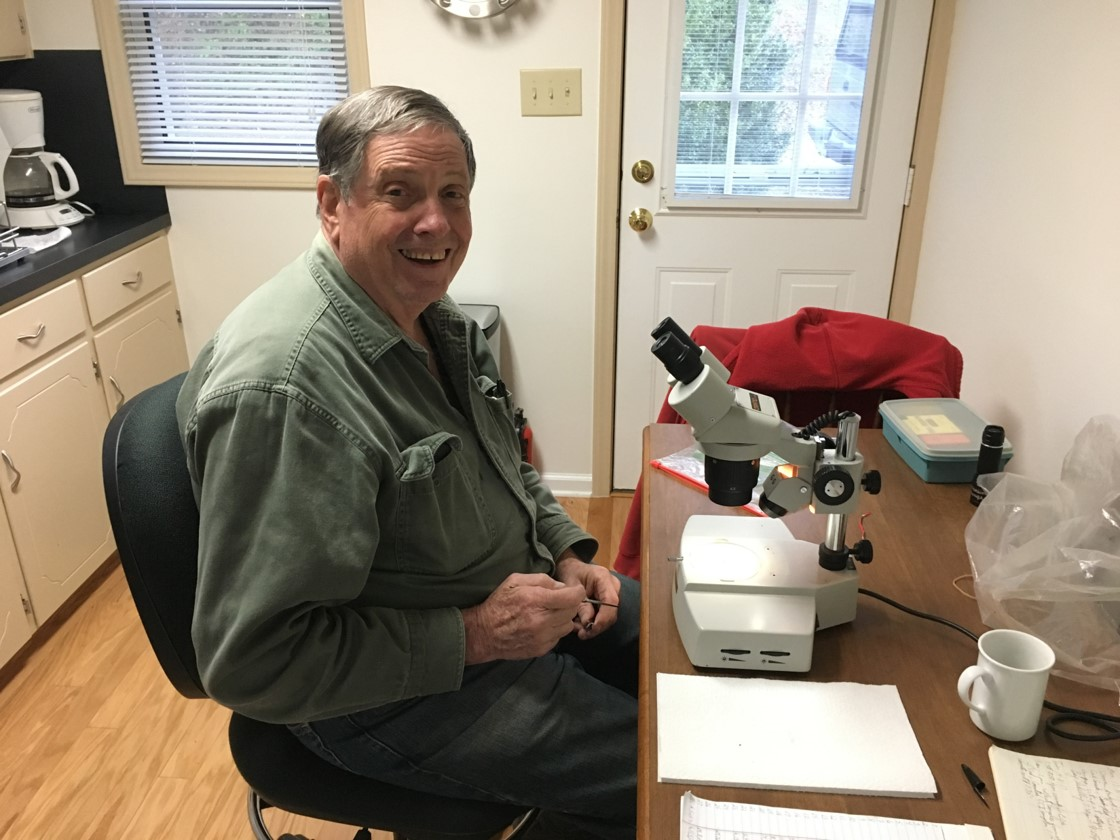 Bob Dunn, retired nematologist, working on Boxwood Leafminer research.