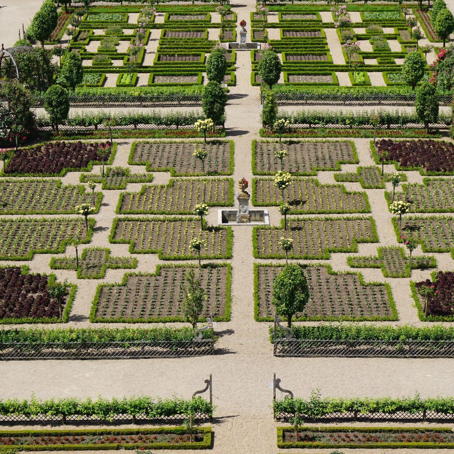 Boxwood gardens at the Chateau de Villandry.