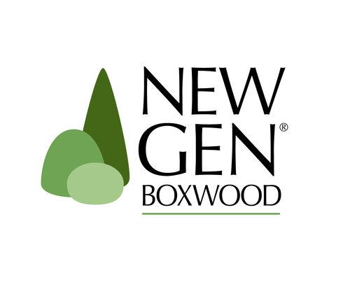 NewGen Boxwood