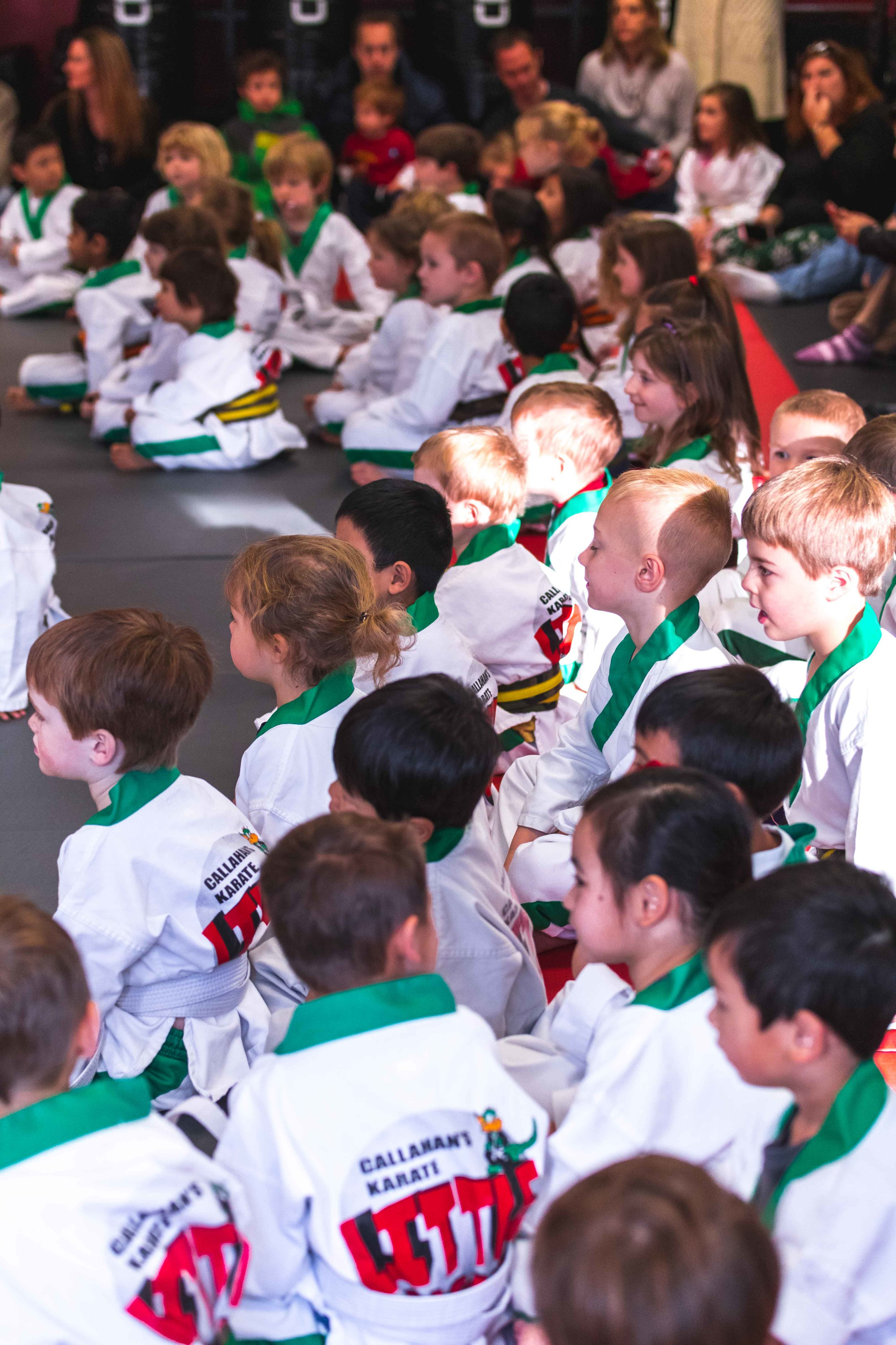 Callahans Karate Family Martial Arts Studio Bedford MA Classes for Kids teenagers and adults in Bedford MA 2.jpg