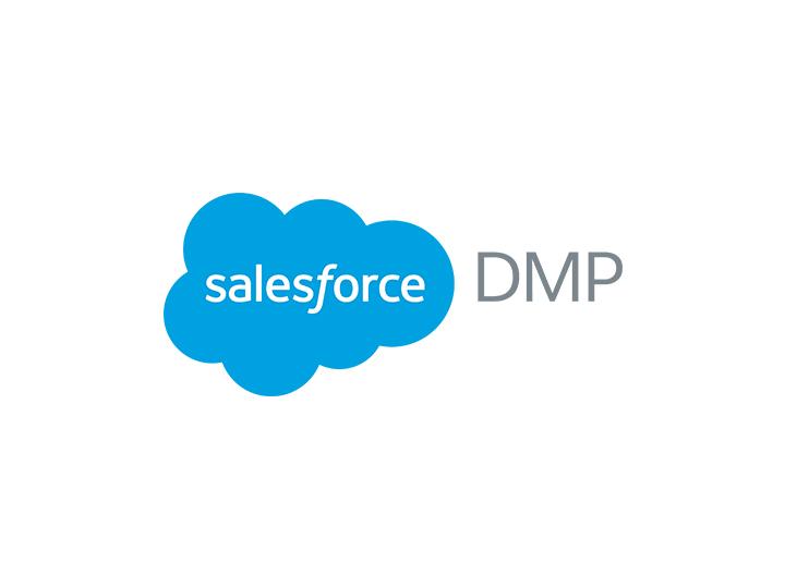 salesforcedmp.jpg