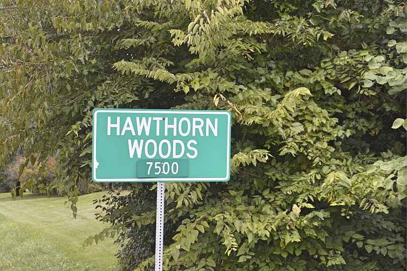 Hawthorn Woods.jpg