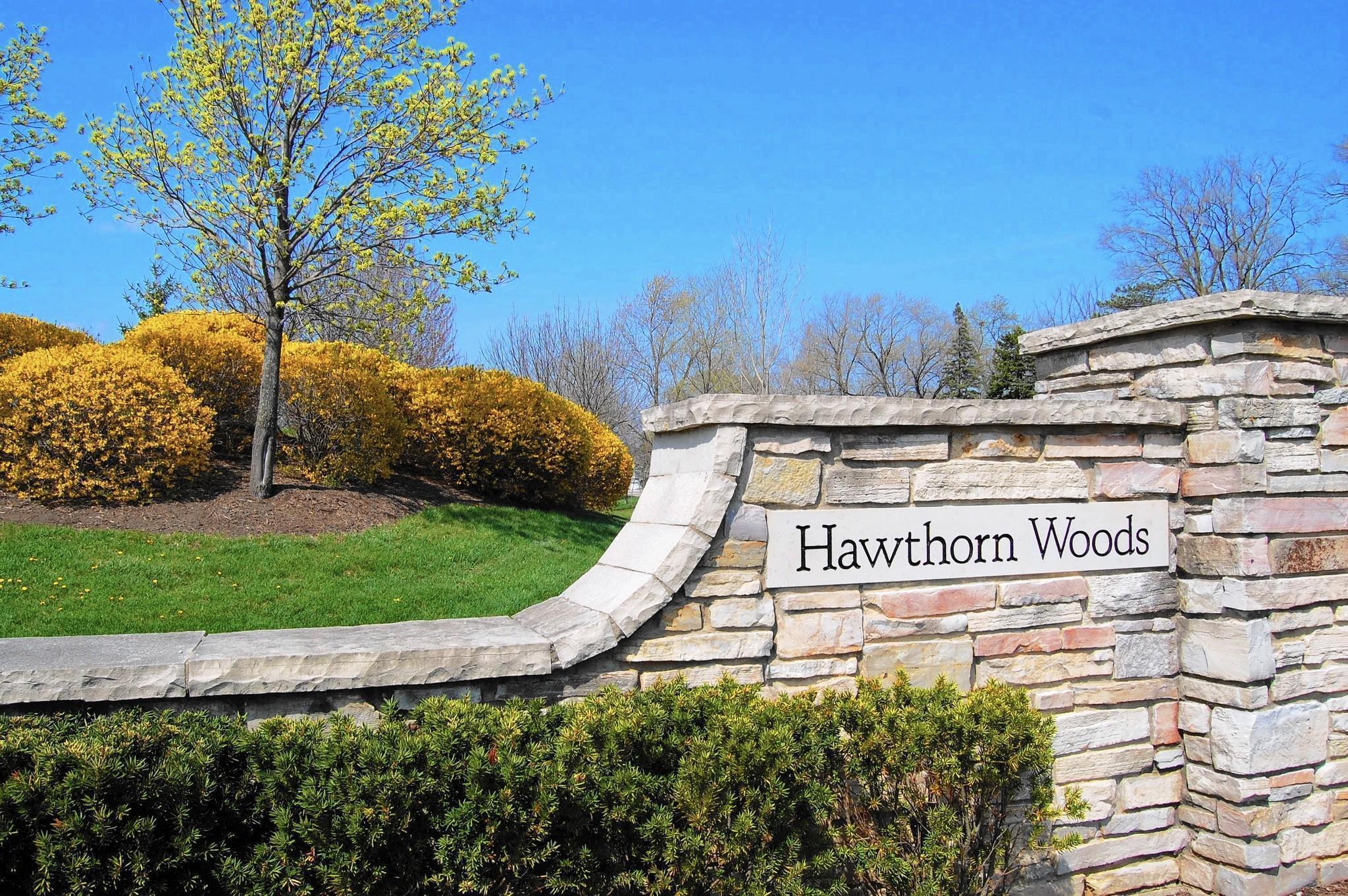 Hawthorn Woods 2.jpg