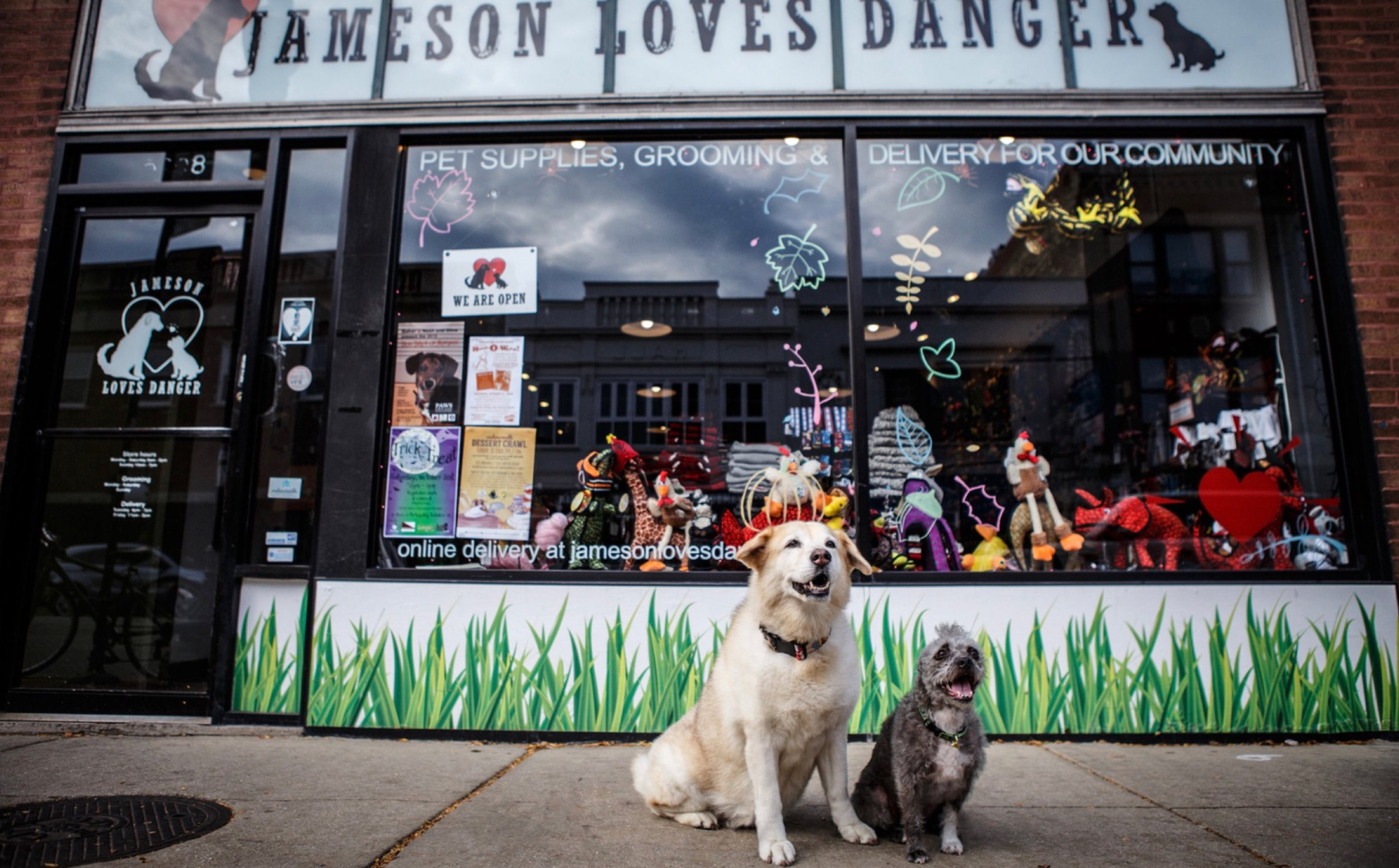 Jameson Loves Danger - A small, independent pet supply and grooming store called Jameson Loves Danger is found in the heart of Andersonville, Chicago, IL. Jameson Loves Danger is committed to the well being and as well as the health of our beloved pets and pet owners. Their goal is to provide quality pet supplies. Jameson Loves Danger offers dog and cat bath service, dog and cat fill service groom, and additional services that will surely make your beloved pets look and feel great.