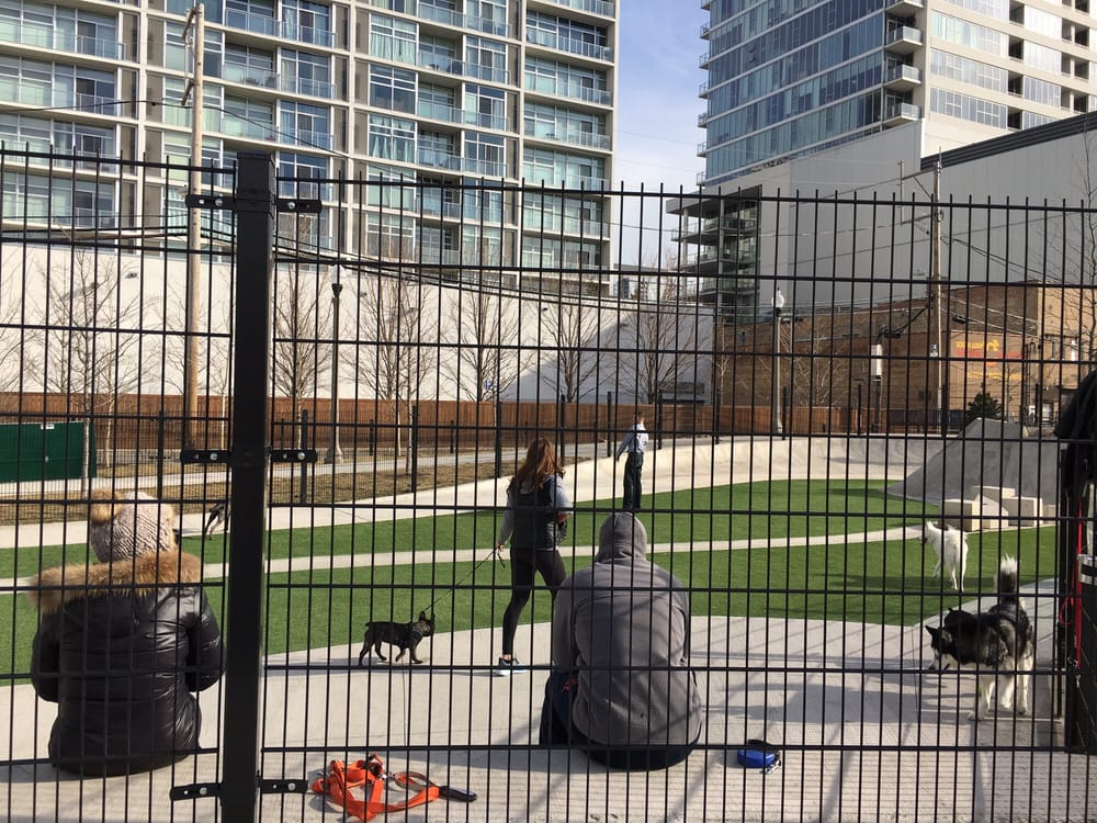 Fred Anderson Park Dog Park 2.jpg