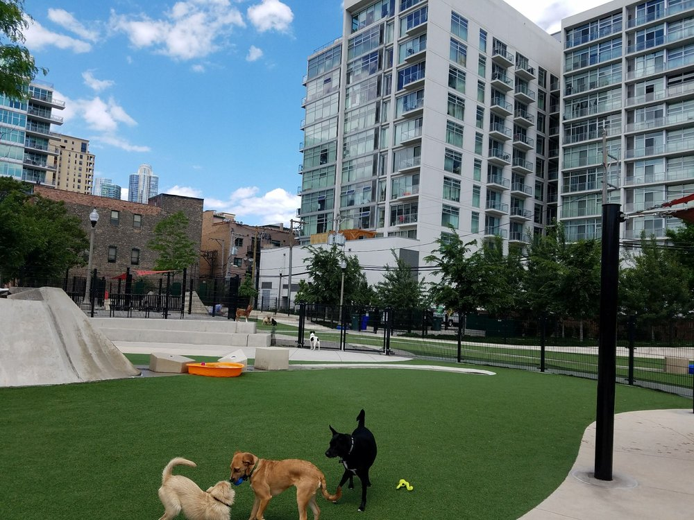 Fred Anderson Park Dog Park.jpg