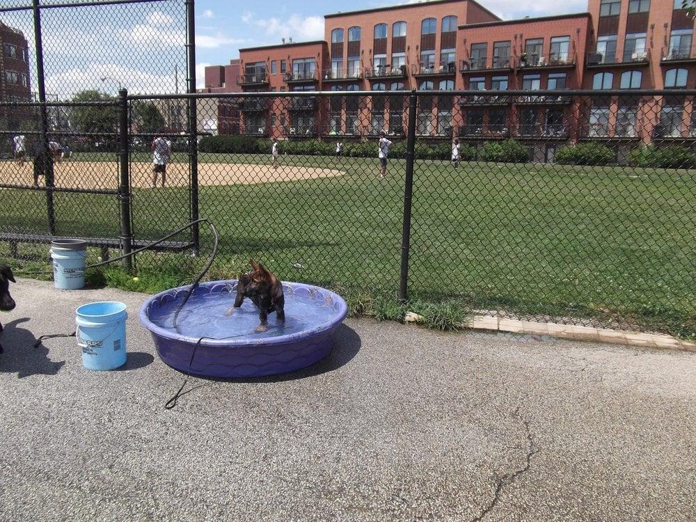 Churchill Field Dog Park 1.jpg