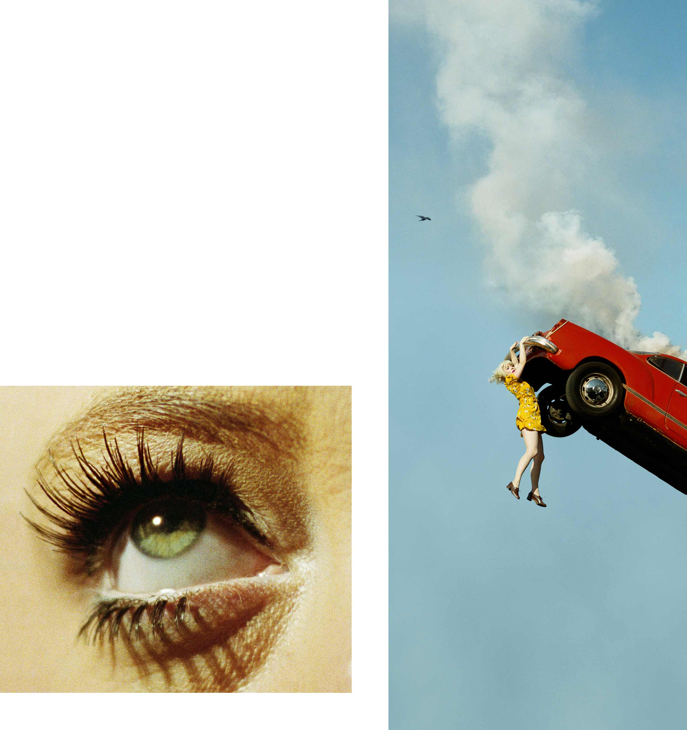 Compulsion   3:32 PM, Coldwater Canyon and Eye #5 (Automobile Accident) (Diptych) , 2012