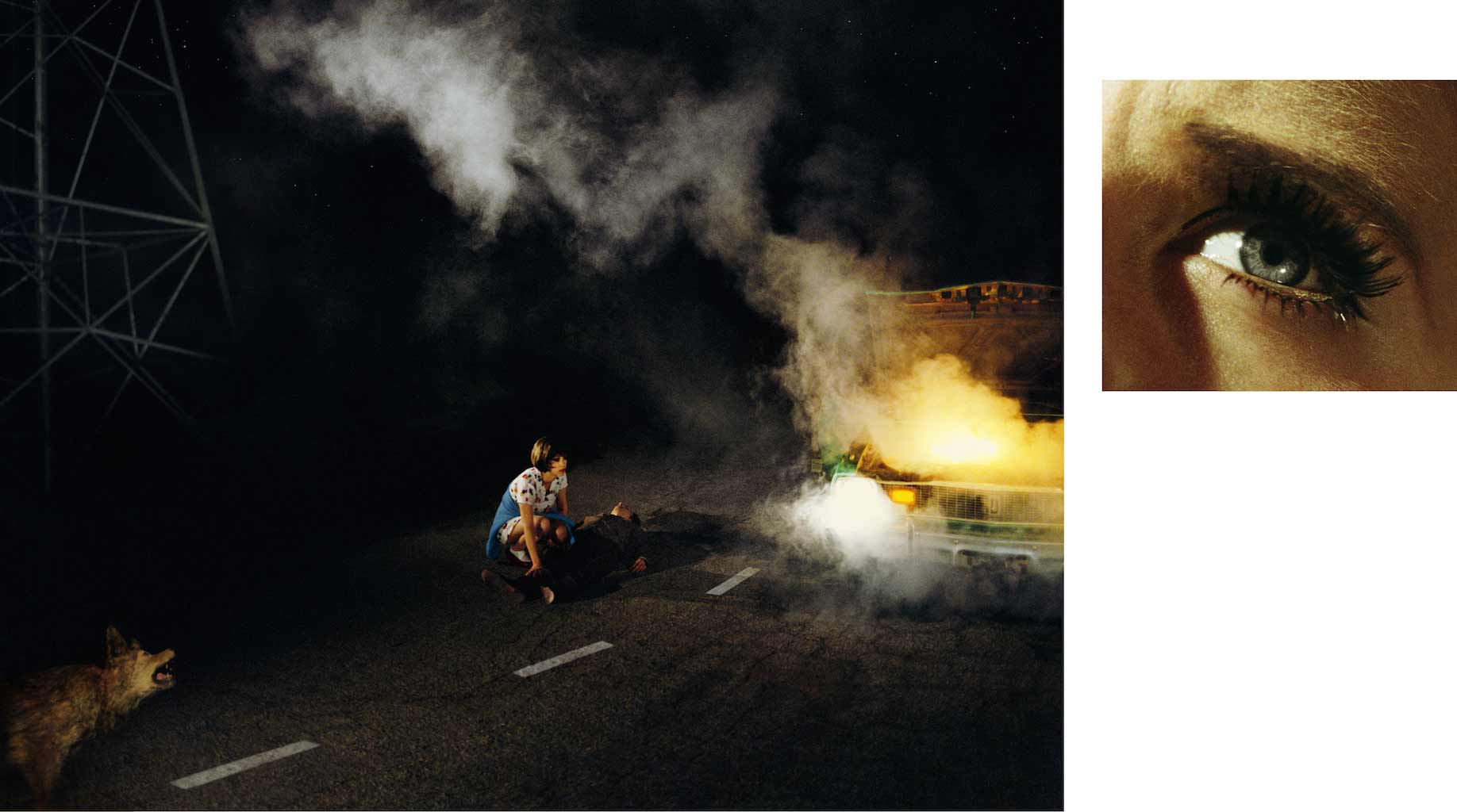 Compulsion   11:45 PM, Griffith Park and Eye #4 (Roadside Victim) (Diptych),  2012