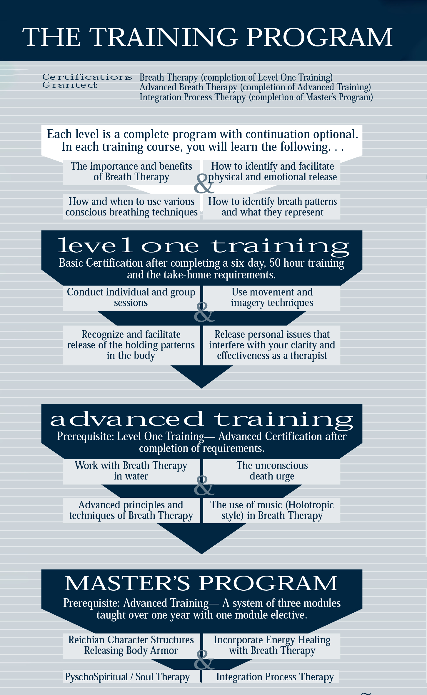 The Traning Program.jpg