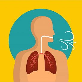 breathing_lungs_icon_flat_illustration_breathing_lungs_cg2p54013856c_th.jpg