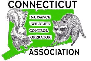 CTNWCOA Logo (1).png