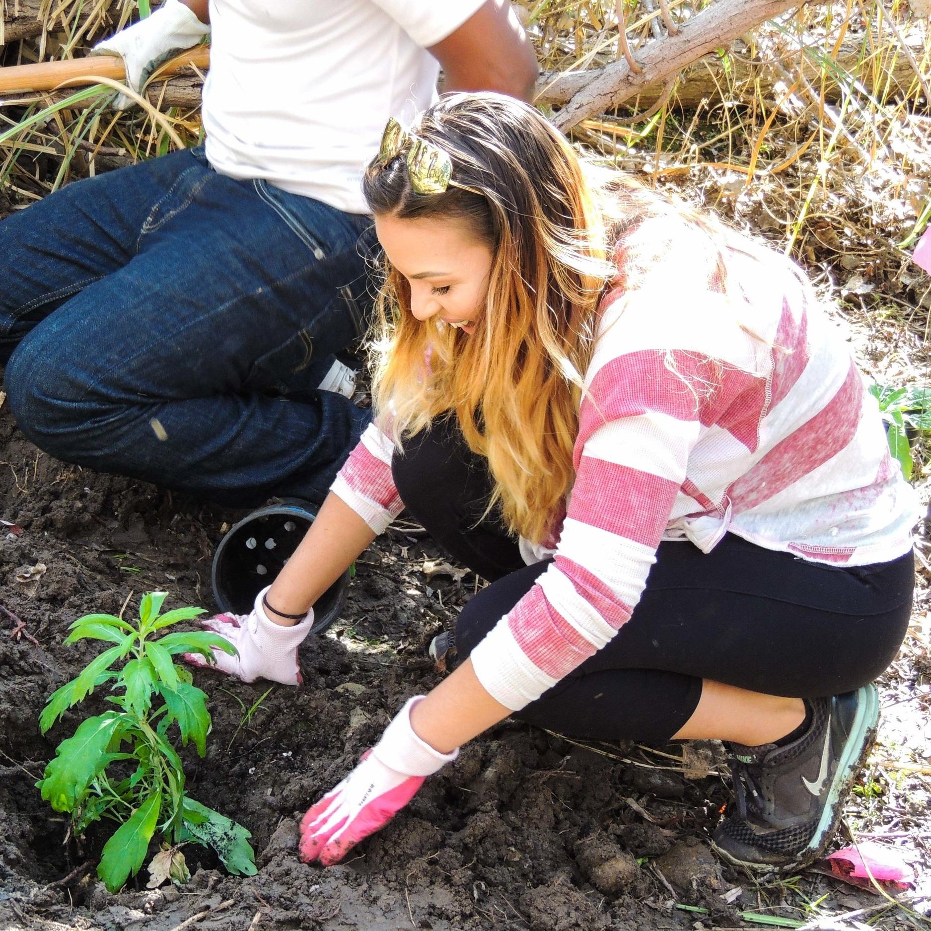 Volunteer-+Shepherd+Planting+w+Helix.jpg
