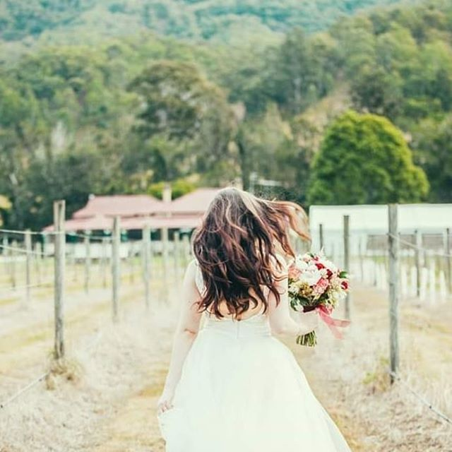 Vineyard wedding goals Stunning location looking back over the historic homestead and the marquee 💕  #goldcoastwedding #hinterlandweddings #luxwedding #countryweddings #goldcoast #marqueewedding #marquee #wearegoldcoast #thisisqueensland #brisbanebride #brisbanewedding #bridetobe #gcbride #scenicrim #canungravalleyvineyard #vineyardwedding #discovernorthernnsw #tamborinemountain #tamborinewedding