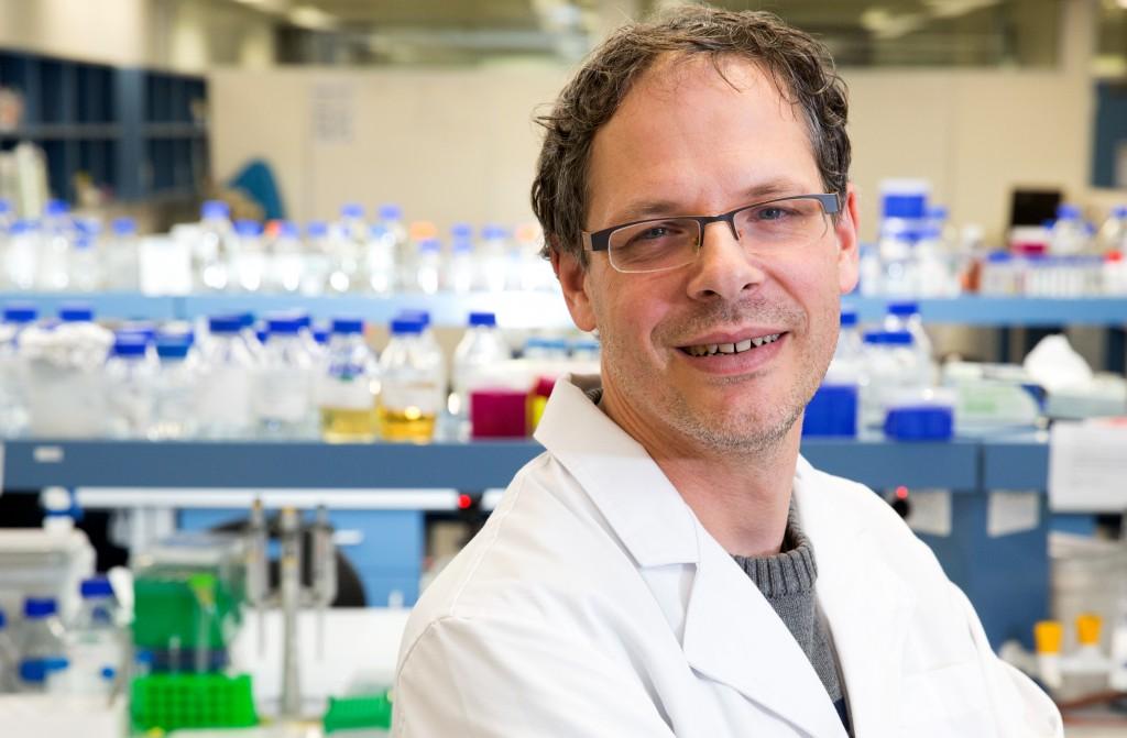 Prof Ian Paulsen