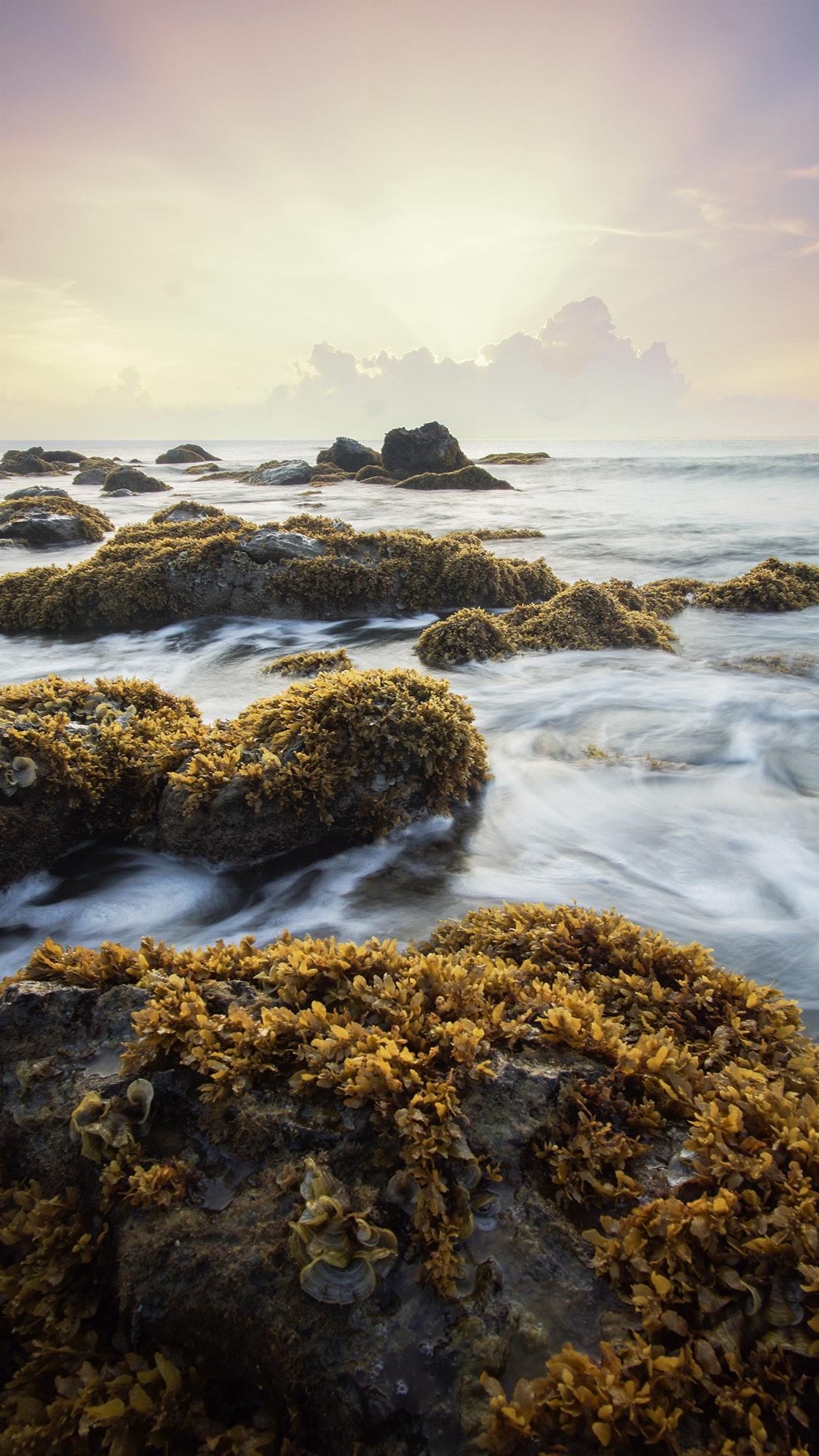 beach-beautiful-calm-398455.jpg