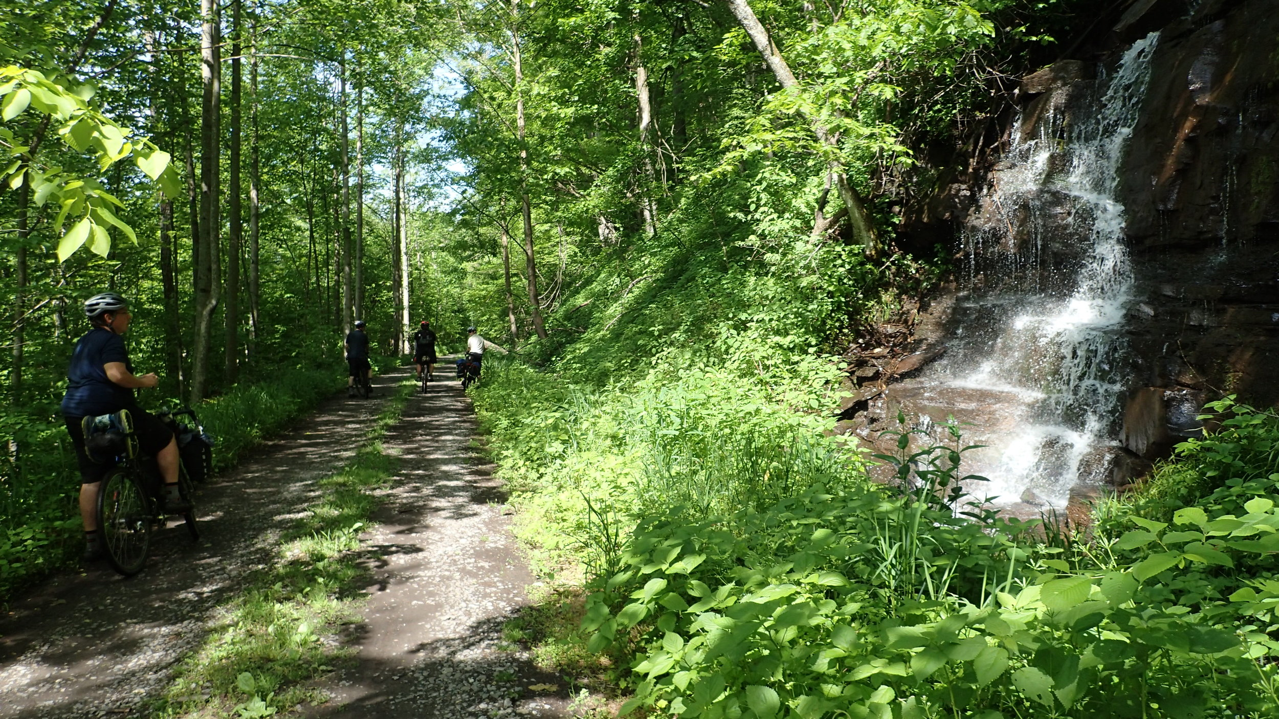 Blackwater Canyon Trail