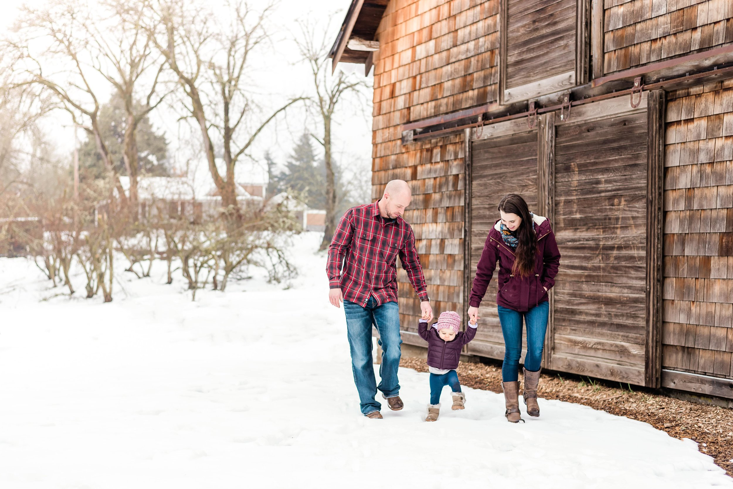 family walking in the snow holding hands