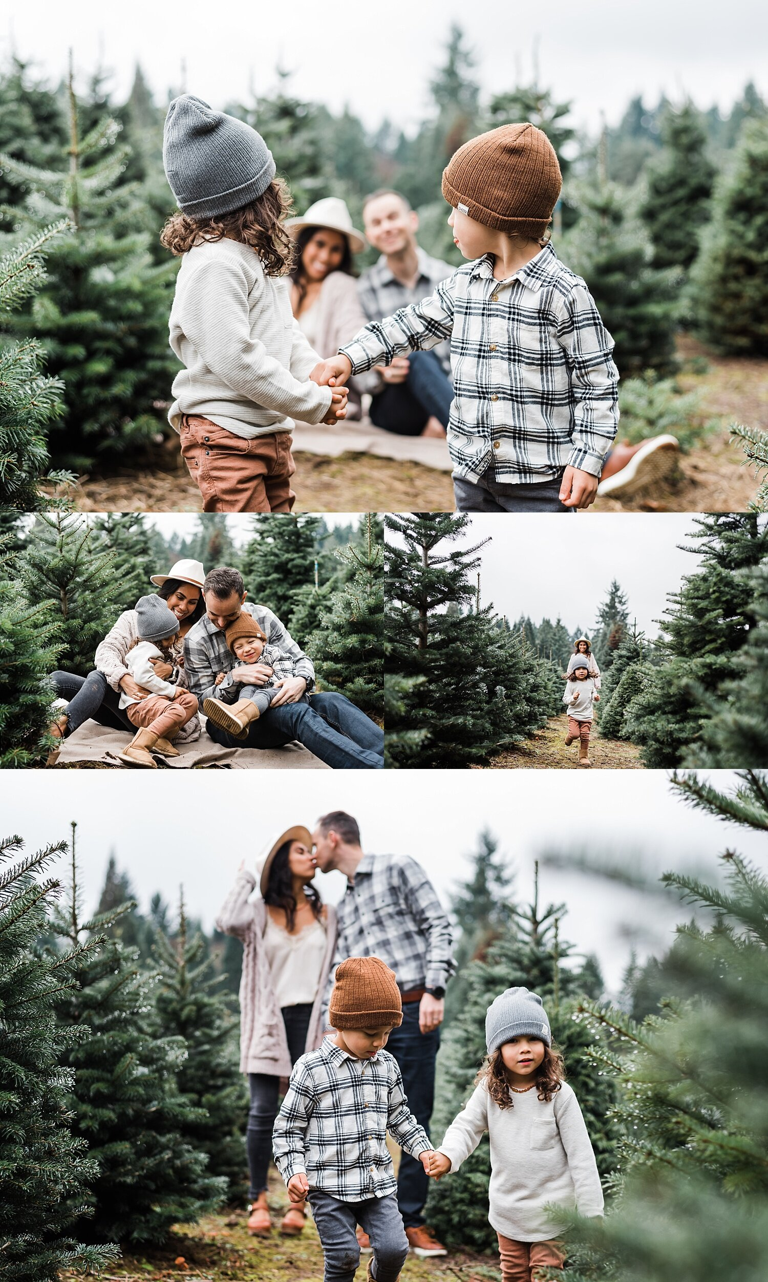 Portland Oregon Christmas Tree Farm Photos Elizabeth Hite Photography