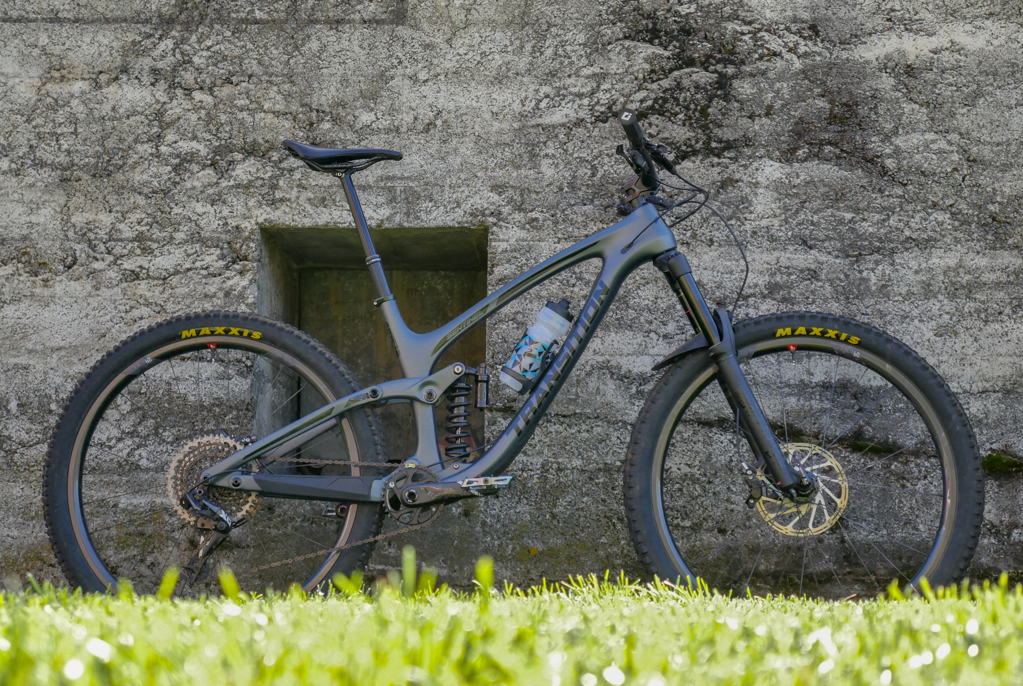 2019 transition Sentinel Carbon billy