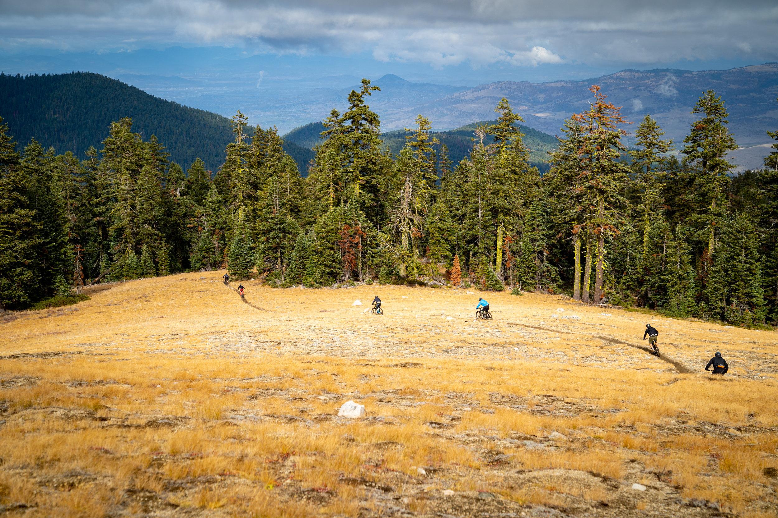 Project Bike rides Ashland Oregon Time Warp