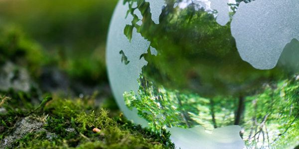 Environmental Management Systems (EMS) ISO 14001 Lead auditor -