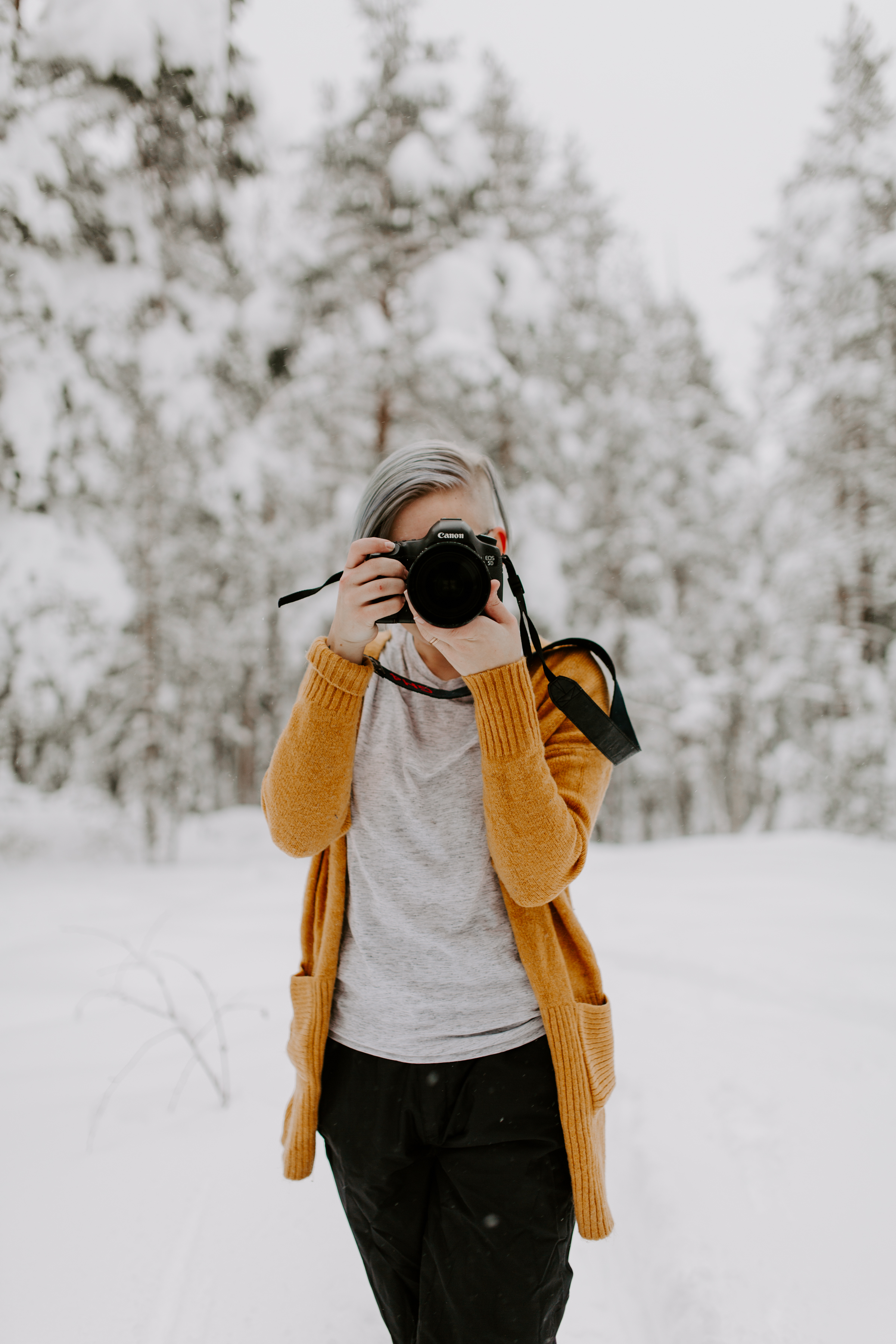 Photo by:  Susanna Lönnrot