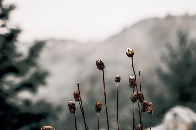 """My Savior, He can move mountains"" ⛰ 🖤"