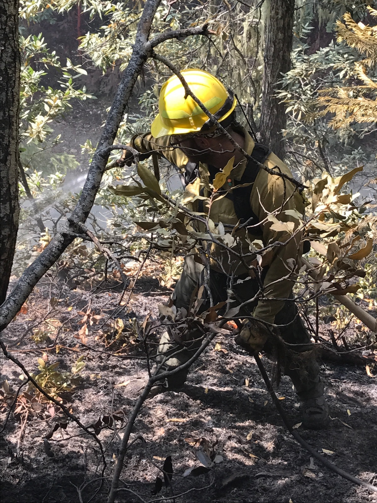 Treasure Valley Fire Wildland Firefighting Services