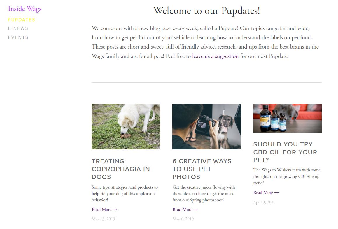 "A blog for our client Wags to Wiskers, aptly titled "" Pupdates """