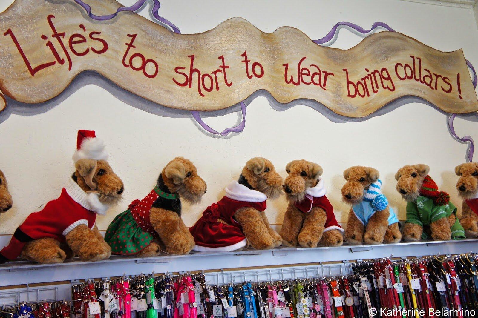 holiday display pet store.JPG