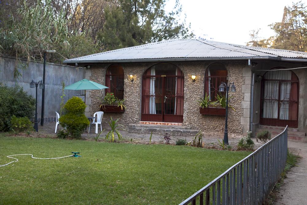 Backyard at Sheba Guest House.