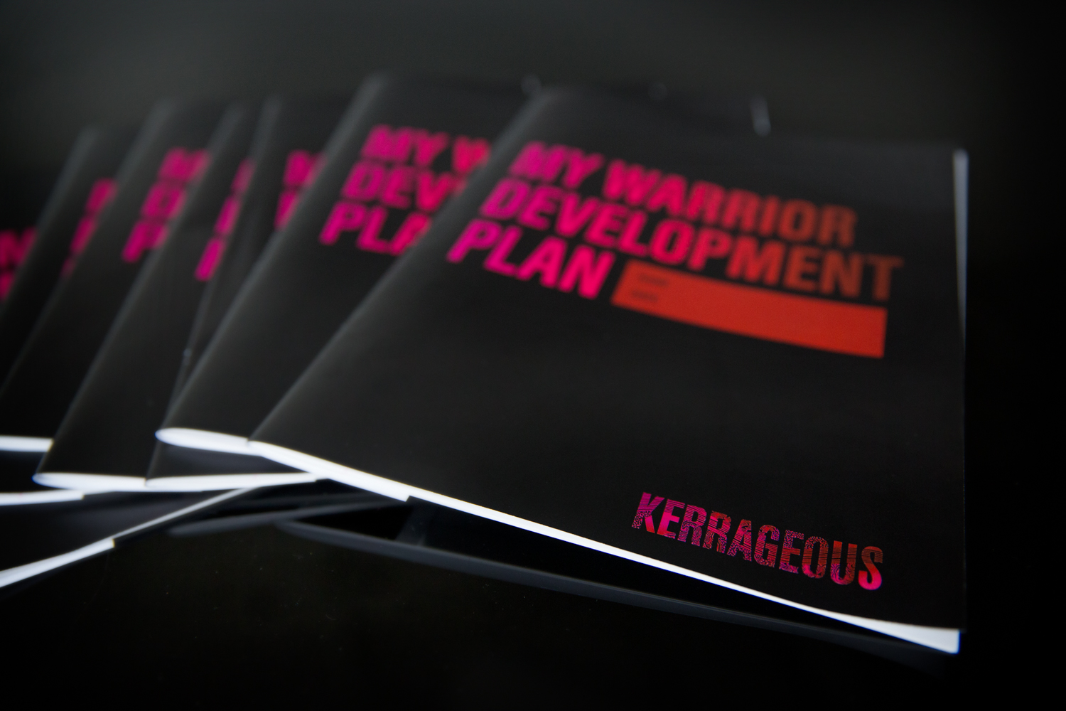 PLUS:Warrior Development Workbooks for up to 30 workshop participants - (a value of over $4,000.00)