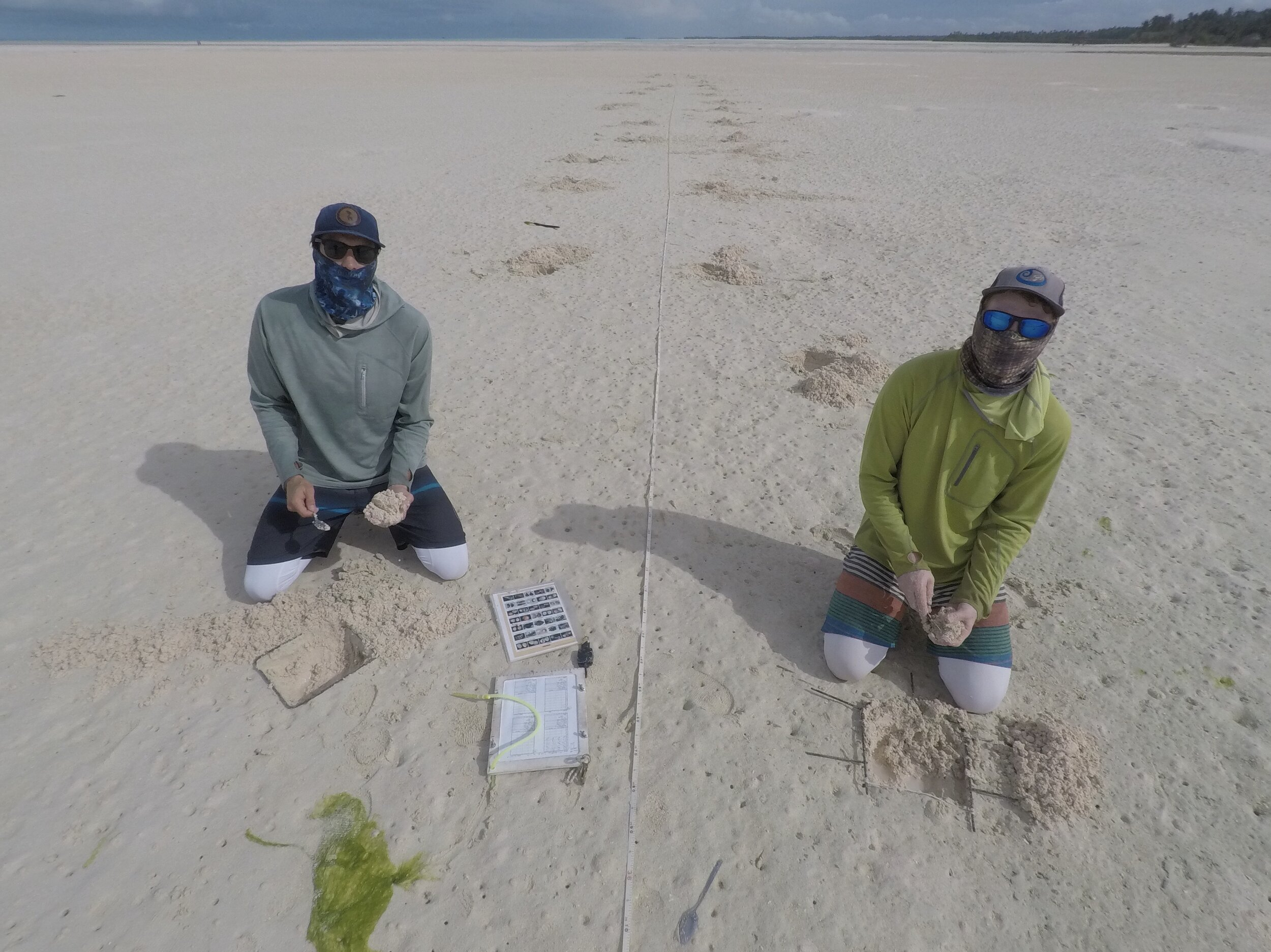 Sand flat research