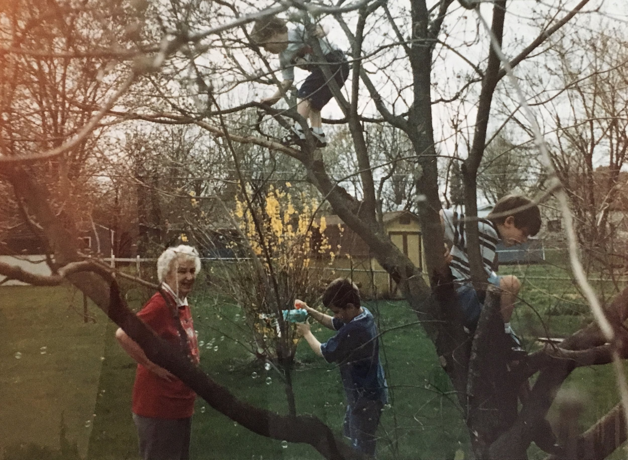 Grandma Fairy with some of her grandkids in the dogwood tree we all learned to climb.
