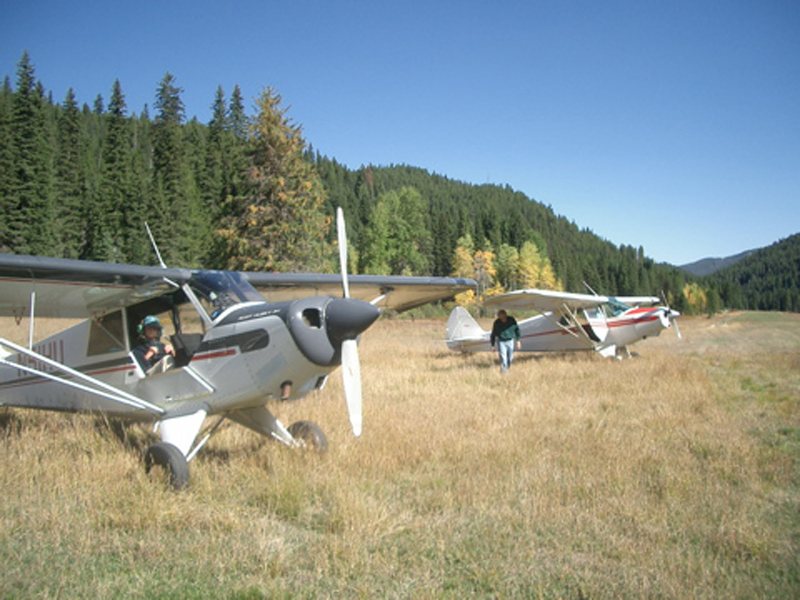 aviat husky grass runway